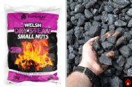 Welsh Dry Steam Small Nuts - 1 tonne